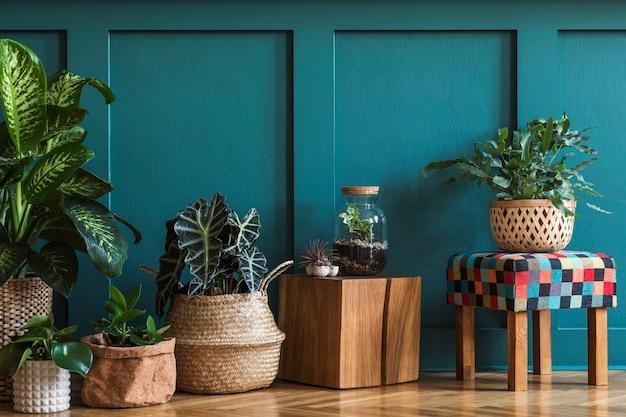 가정 정원의 현대적인 구성은 다른 디자인 냄비에 아름다운 식물, 선인장, 다육 식물, 공기 식물을 많이 채웠습니다. 세련된 식물학 인테리어. 녹색 벽 패널. 가정 원예 개념