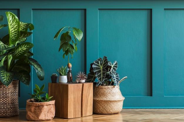 가정 정원의 현대적인 구성은 다양한 디자인 화분에 아름다운 식물, 선인장, 다육 식물, 공기 식물을 많이 채웠습니다. 세련된 식물학 인테리어. 녹색 벽 패널. 템플릿 홈 원예 개념