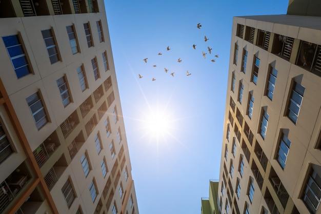 Modern condominium buiding with sunlight