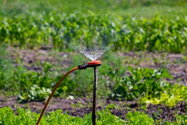 灌漑庭園の近代的な装置。灌漑システム-庭に水をまく技術。