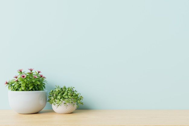 Modern empty room with plants on floor wooden,blue wall.