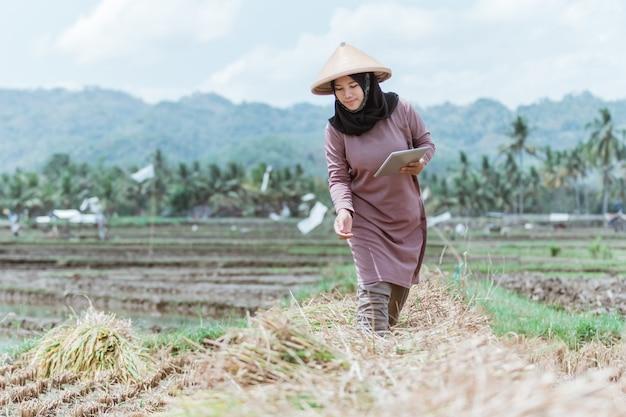 밭에서 수확 한 쌀을 판매하기 위해 정제를 사용하는 현대 여성 농부