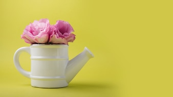 Modern flowers concept with watering pot
