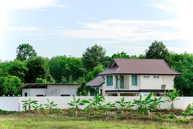 녹색 나무가 있는 현대적인 집, 멋진 자연으로 둘러싸인 큰 집, 자연 경관이 있는 단독 주택, 태국의 열대 우림