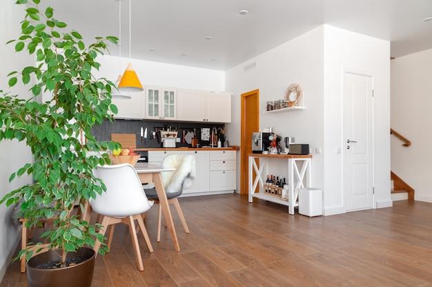 Modern interior of kitchen, white wall, wooden chairs, green flower in pot. concept scandinavian design