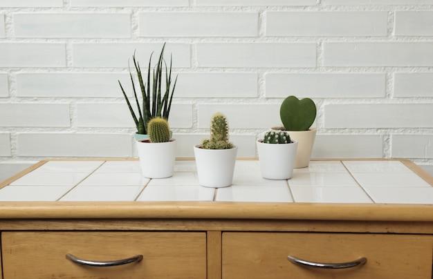 Modern kitchen or bathroom interior with cacti minimalistic decoration.