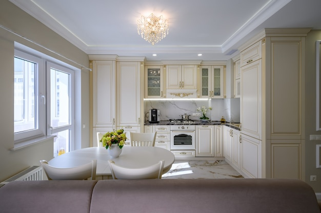 Modern large luxurious kitchen and dining room in studio apartment