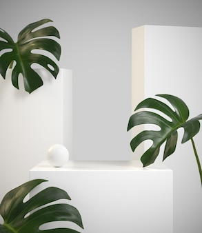 Modern minimal beauty white display with monstera tropic plant. 3d render