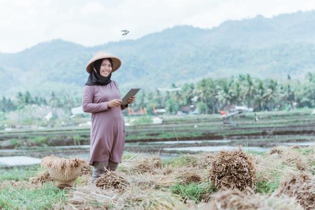 현대 무슬림 여성 농부들은 밭에서 쌀을 수확 한 후 정제를 사용합니다.