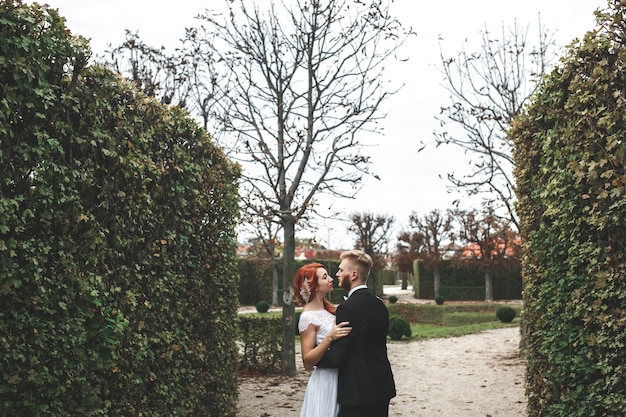 Modern newlyweds kissing in the park