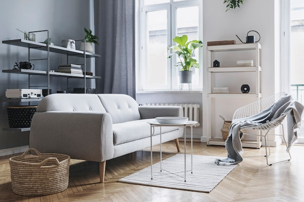 Modern nordic living room interior with design grey sofa, coffee table, plants, stylish accessories, decoration, carpet and bookstands in elegant home decor