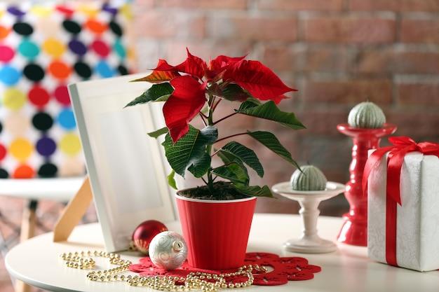クリスマスの花のポインセチアとモダンな部屋のインテリア