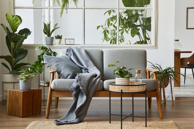 デザイングレーのソファ、アームチェア、たくさんの植物、コーヒーテーブル、カーペット、居心地の良い家の装飾のパーソナルアクセサリーを備えたリビングルームのモダンなスカンジナビアのインテリア。テンプレート。