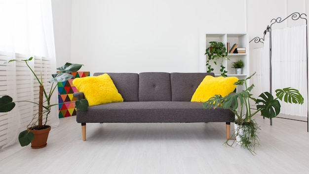 Modern studio apartment with living plants. bright colors in the interior. gray sofa with yellow pillows.