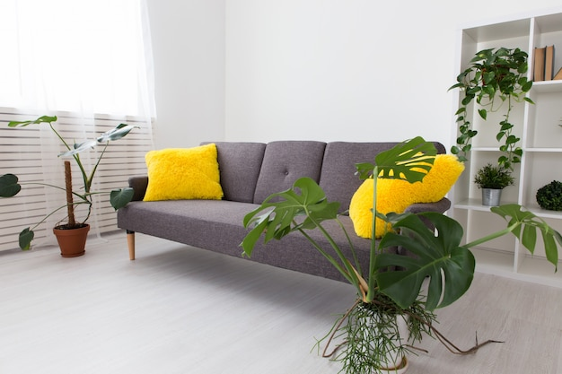 Modern studio apartment with living plants. bright colors in the interior.