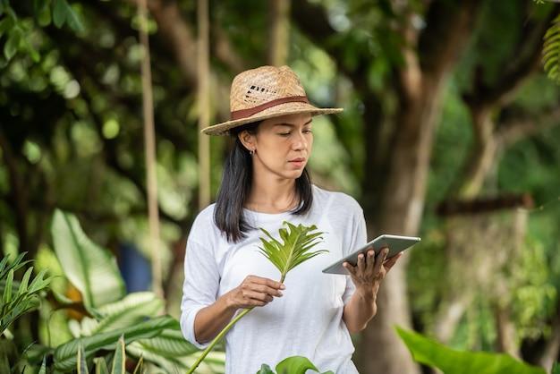 원예 사업의 현대 기술. 정원 센터에서 일하는 디지털 태블릿을 가진 젊은 여자. 디지털 태블릿을 사용하는 환경 운동가. 여자 여름 자연에서 외부 원예입니다.