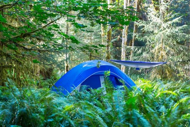 緑の森の木々の間にぶら下がっている現代の観光テント