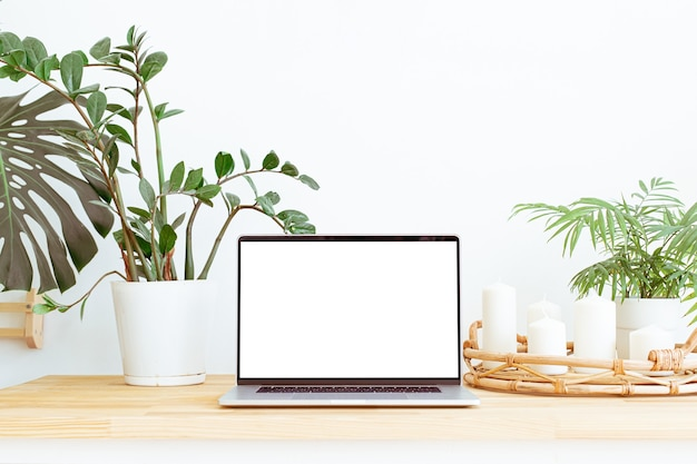 Современное модное рабочее место домашнего офиса с зелеными растениями и фоном декора интерьера бохо. натюрморт с белым экраном ноутбука