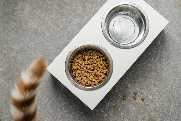 Modern trendy wood dish stand at home cat feeder with food