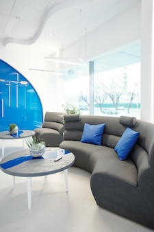 Modern waiting area with sofa decorated with blue pillows, coffee tables with plants