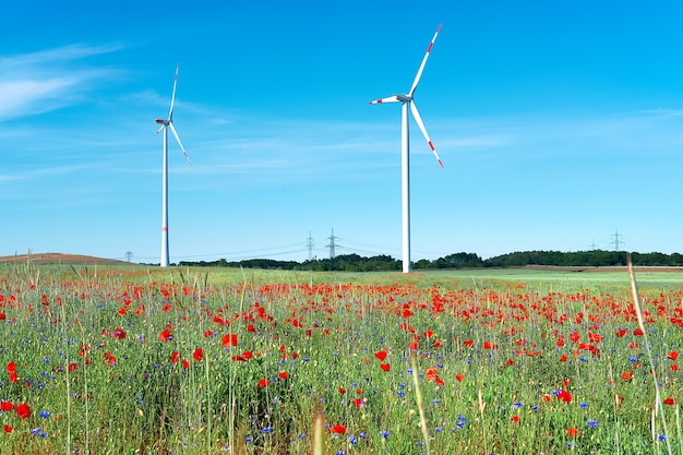 Modern wind turbines in flower field with red poppy and blue cornflowers. alternative green energy, eco-friendly sustainable lifestyle, trendy technology.