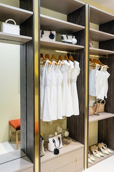 Modern wooden wardrobe with clothes hanging on rail in walk in closet interior