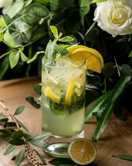 Mohito cocktail with lemon and mint