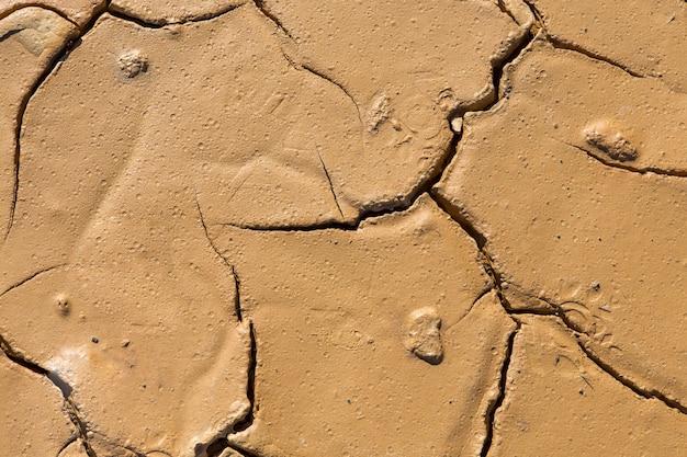 균열이 있고 질감이나 배경에 이상적인 태양에 의해 조명되는 축축한 점토질 토양