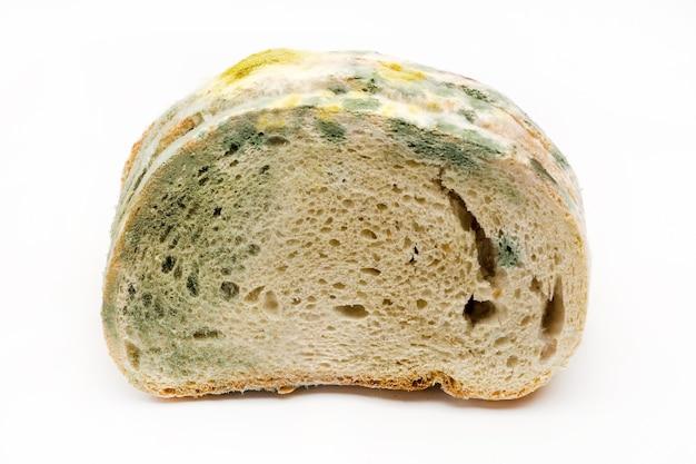 흰색 배경에 고립 된 빵에 곰팡이