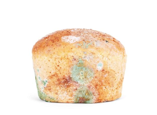 흰색 바탕에 빵에 곰팡이. 외딴