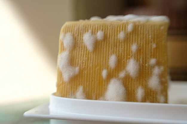 곰팡이가 핀 치즈. 곰팡이 버섯과 치즈. 나쁜 치즈. 건강에 해로운 음식. 부엌에 음식