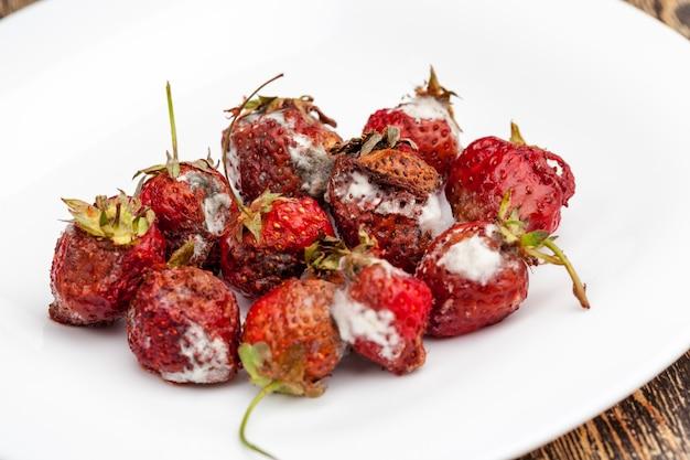 곰팡이가 핀 썩어가는 빨간 딸기를 닫습니다.