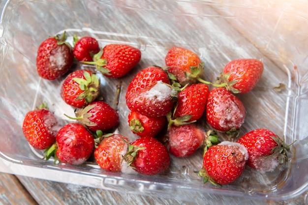 Заплесневелая клубника в ящике. летом гнилые ягоды. плохие условия сохранности.