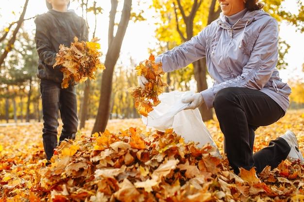 ママと子供が公園で落ち葉を掃除しています。女性と男の子が葉を集めています。秋の風景。環境保護活動家。