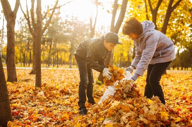 ママと子供が公園で落ち葉を掃除しています。女性と男の子が葉を集めています。秋の風景。母と息子が秋の葉を屋外で掃除します。環境保護活動家。