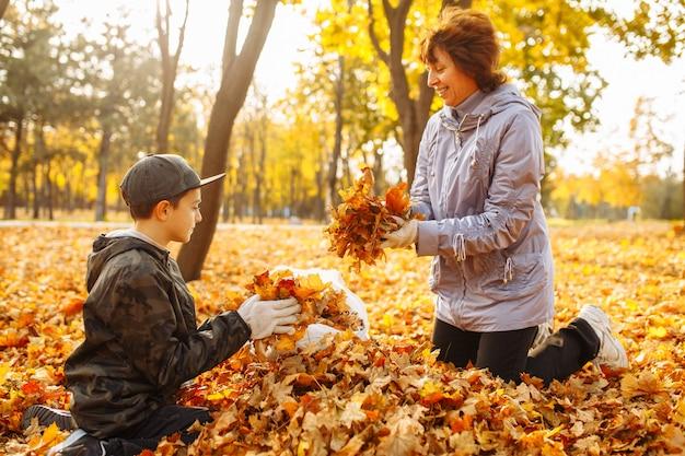 ママと子供が公園で落ち葉を掃除しています。女性と男の子が葉を集めています。秋の風景。母と息子が秋の葉を屋外で掃除します。