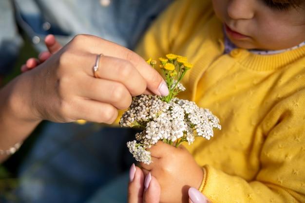 Мама и дочь изучают цветы тысячелистника крупным планом