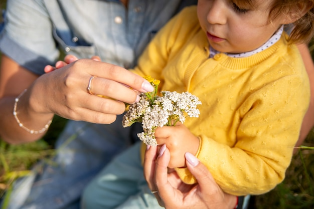ママと娘の幼児が花束を集める花の花束ヤロウクローズアップ晴れた日
