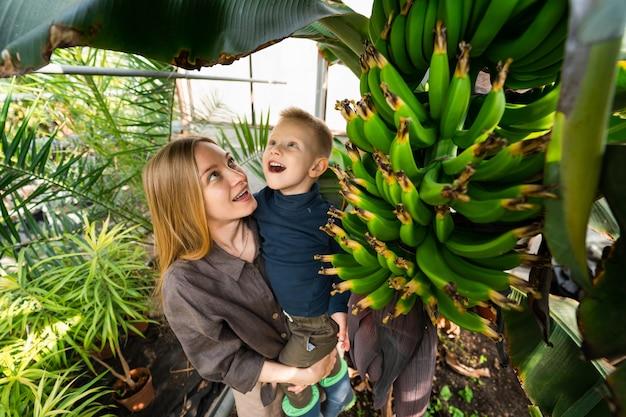 엄마와 아들은 놀라서 바나나 나무를 봅니다.