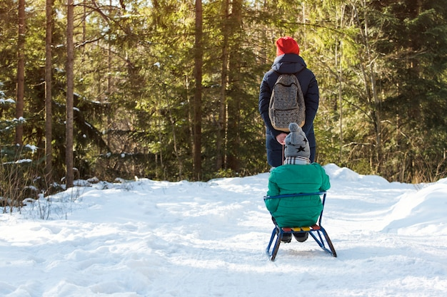 Mom carries her son on a sled through the snow-covered coniferous forest.
