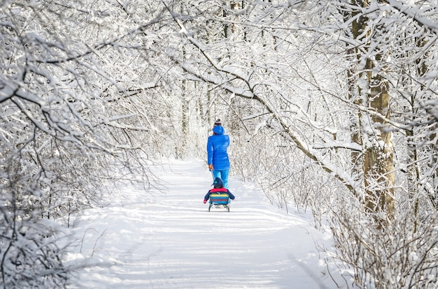 Mom and child on a sledge on a winter path in a snowy forest.