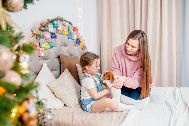 Mom gives jack russell puppy to daughter on new year's eve on the background of advent calendar, loving family in the room