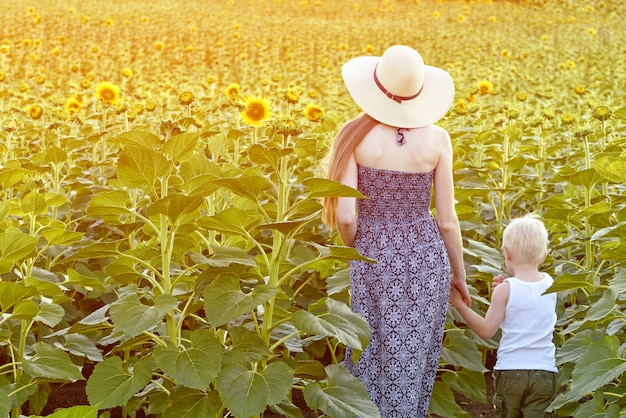 Mom and little son are walking in the blossoming field of sunflowers. back view