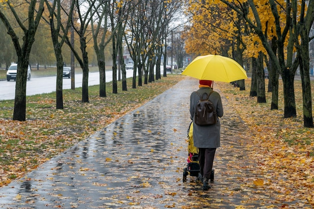 Mom with baby carriage walks in the rain in autumn park. alley with fallen leaves. woman with yellow umbrella. back view.