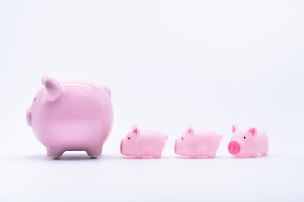 Mommy and baby piggy banks