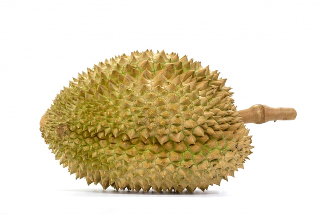 Mon thong durian fruit on white background