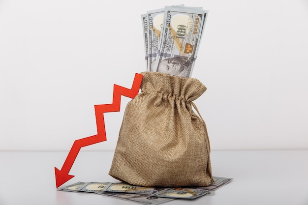 お金の袋と白い背景で隔離の赤い下向き矢印。経済的困難の概念。
