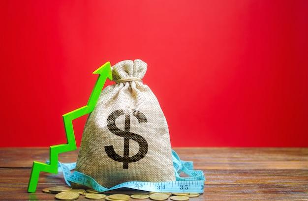 コインと上矢印のお金の袋。成功するビジネスのコンセプト。利益を増やす