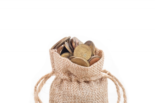 Money bags and coins