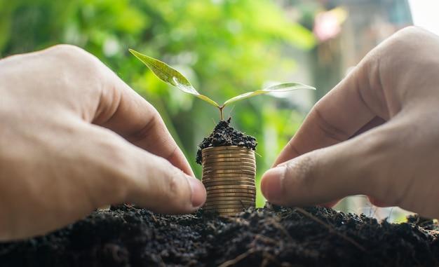 비즈니스 성장을위한 돈 동전
